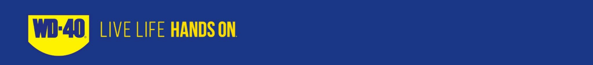 banner mup llho desktop